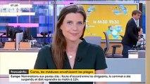 A cause de la canicule de Juin, de la surpêche et de la pollution, la Corse est en proie à une prolifération de méduses
