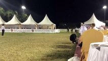 Arabian Horse Breeders Championship