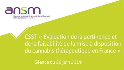 Evaluation de la pertinence et de la faisabilité de la mise à disposition du cannabis thérapeutique - séance du 26 juin 2019