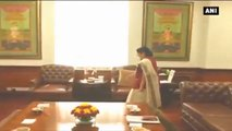 Ahead of Nepal PM's Visit, Sushma Swaraj Meets Her Counterpart