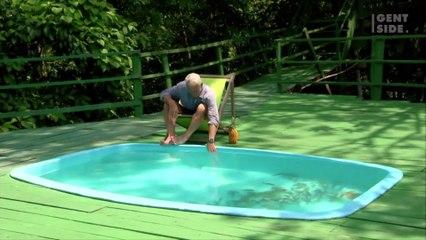 Decide di immergersi in una piscina piena di piranha  3684