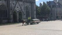 En centre-ville de Quimper, des chevaux pour la collecte des déchets cet été