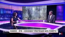 Maroc - été .. Comment protéger nos Forêts?  - 02/07/2019