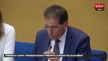 Energie et climat : françois de rugy présente le projet de loi au sénat - Les matins du Sénat (03/07/2019)