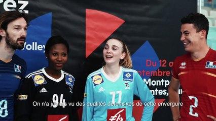 France Volley x France Handball