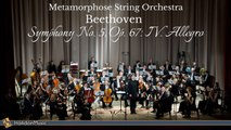 Metamorphose String Orchestra - Beethoven: Symphony No. 5 in C Minor, Op. 67: IV. Allegro