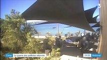 Corse : tensions sur les plages après une décision de justice