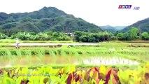 Đại Thời Đại Tập 96 - đại thời đại tập 97 - Phim Đài Loan - THVL1 Lồng Tiếng - Phim Dai Thoi Dai Tap 96