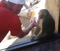 Funniest moments ll Funniest moments