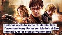 Une série tirée de l'univers Harry Potter est en préparation