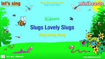 Airgun Hunting with  22 Slugs,  25 Slugs &  22 JSB Hades