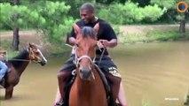 Ce cheval a peur de l'eau