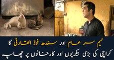 Team Sareaam and SFA raids well-known bakeries in Karachi