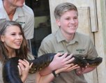 Steve Irwin's Son Robert Pays Tribute With Crocodile-Feeding Photo