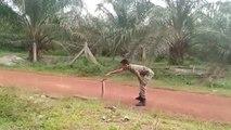 Un soldat maîtrise un Grand Cobra - Malaisie