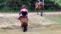 Un cheval bien trop chargé se venge bien comme il faut...