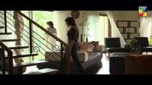 Shehr e Zaat Episode 16 HUM TV Drama#