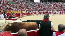 Entrada de los toros a la plaza tras el primer  encierro