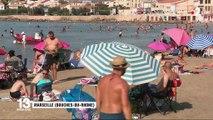 Environnement : la surchauffe de la Méditerranée, un phénomène potentiellement destructeur pour l'écosystème