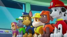 PAW Patrol Season 4 Episode 7 - Pups Save the Critters
