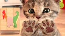 Play Fun Pet Care Kids Game - Little Kitten My Favorite Cat Fun Cute Kitten For Children - Toddlers