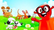 Bingo Dog - Nursery Rhymes - Kids Songs - Cartoon Animation for Children