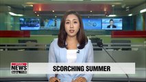 Scorching conditions to continue in Korea