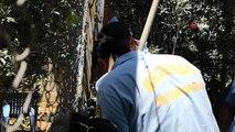 Tarsus'ta elektrik direği içine sıkışan kediyi itfaiye kurtardı