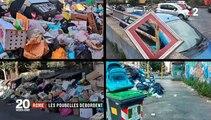 Les ordures s'accumulent dans les rues de Rome ... et les sangliers fouillent les poubelles en pleine ville !