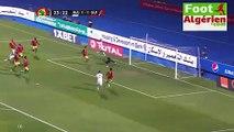 CAN-2019 : Algérie 1 - 0 Guinée (But de Belaîli)
