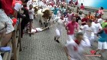 Largada de touros em Pamplona faz feridos