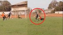 Vidéo - Football : La technique spectaculaire du petit frère de Wally Seck