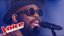 Bob Marley - Redemption Song   Kuku   The Voice France 2017   Blind Audition