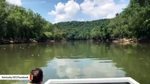 Dead Fish Litter Kentucky River In Wake Of Jim Beam Warehouse Fire