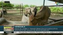 teleSUR Noticias: Pdte. de México inicia gira de salud