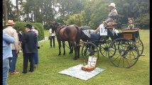 Concours du plus beau pique-nique dans le parc du château à Celles