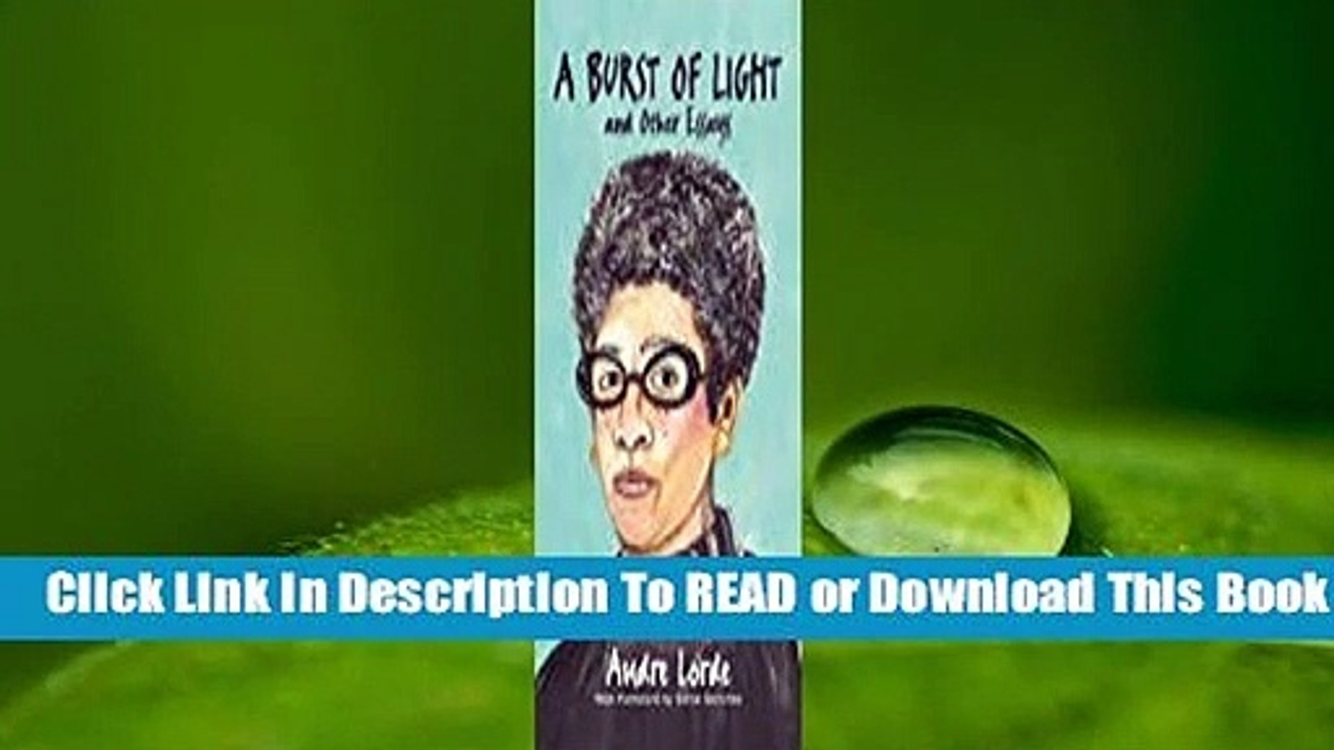 Full E-book A Burst of Light: and Other Essays  For Trial