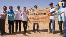 Alibaba's effort to fight desertification gains 500 million app users and counting