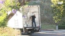 Artista usa su camión como lienzo de sus impresionantes obras