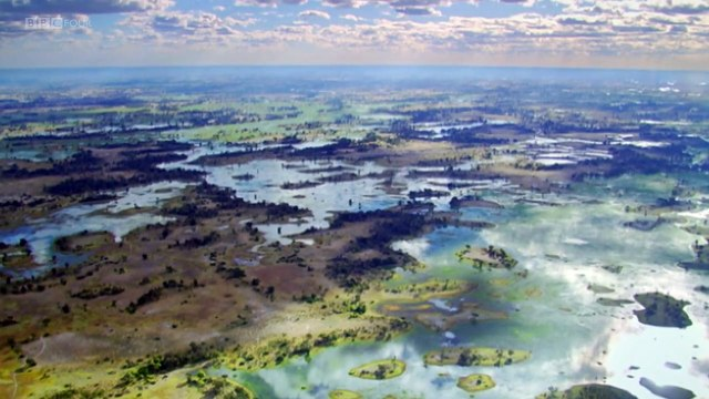 BBC Natures Microworlds (05of13) Okavango