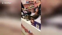 'Cheetah' cat shows off her incredible jumps across tables and high fives owner