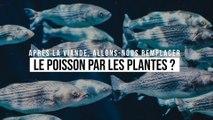 Après la viande, allons-nous remplacer le poisson par les plantes ?
