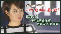 김혜수 모친, 13억 빌린 뒤 갚지 않아 빚투 의혹