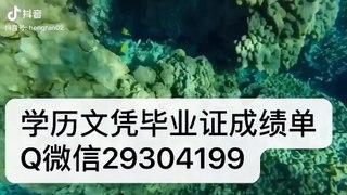 官网留学生学历认证 Q微信『 29304199 』UA毕业�