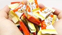 KINDER SURPRISE CHOCOLATE Mix - Hanuta Surprise Egg and Schoko Bons