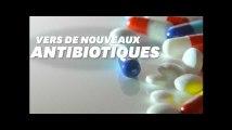 Des antibiotiques qui évitent les résistances conçus par des chercheurs français