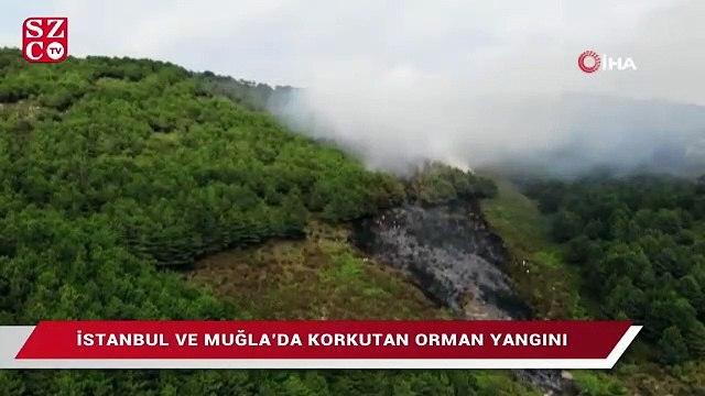 İstanbul ve Muğla'da korkutan orman yangını