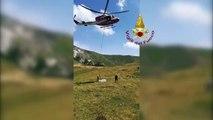 Leonessa (RI) - Soccorso ad una mucca in difficoltà (10.07.19)(