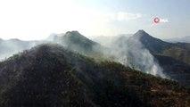 Beytüşşebap'ta ağaçlık alanda yangın çıktı