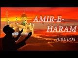 Amir-E-Haram   Naat JukeBox   Haq Maujood   Muzaffar Warsi Naat Collection